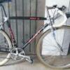 fidrip1981