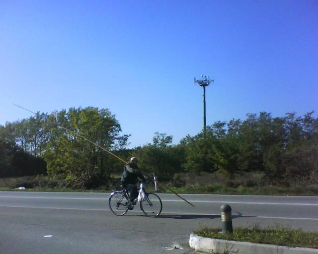 post-5235-0-91183300-1346070812_thumb.jp