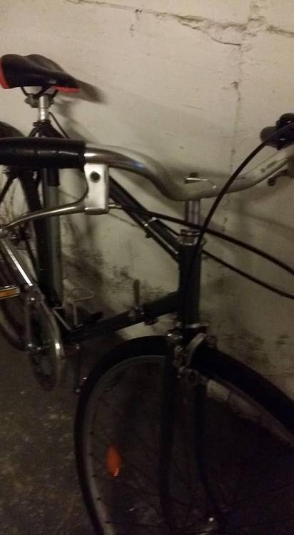 bici2.jpg
