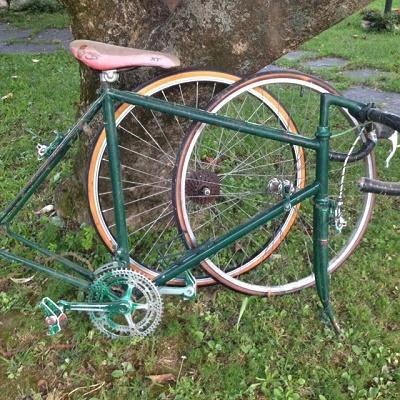 Bici 1.JPG