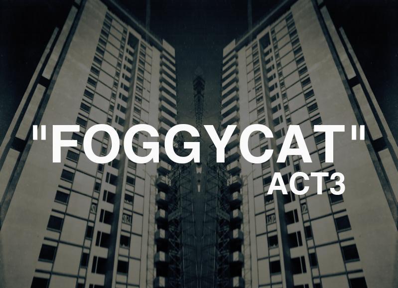 FOGGYCAT3.jpg.6c470e3817748a03a610b17744d77f67.jpg